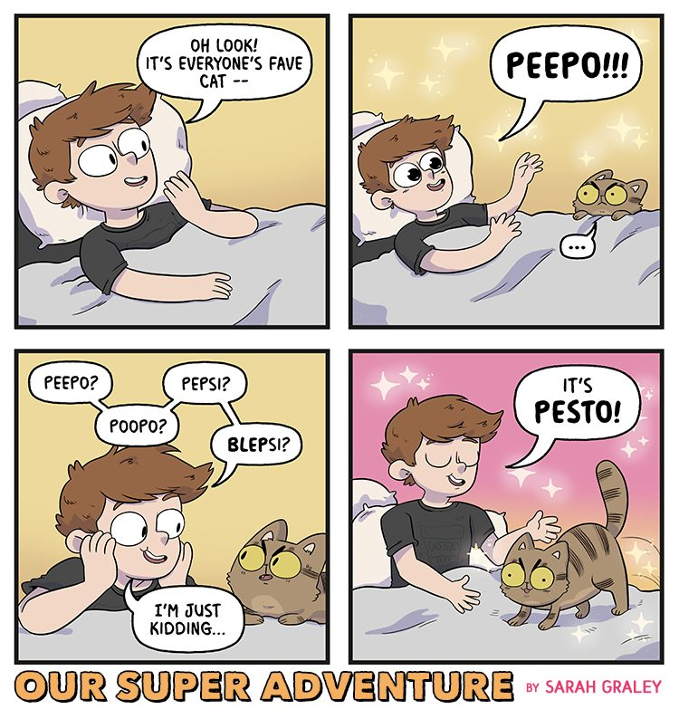 Peepo! (31st December 2018)