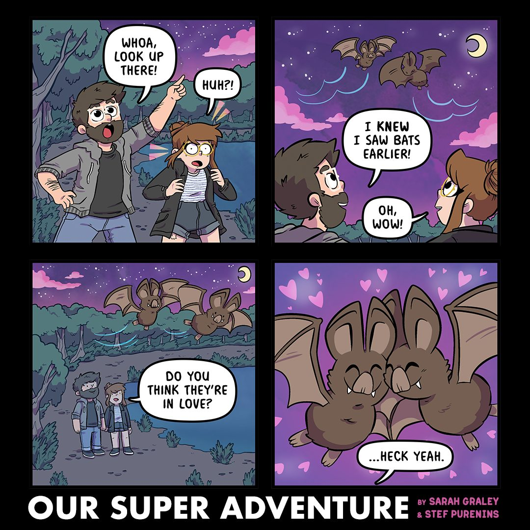 Bat Romance (September 13th, 2021)